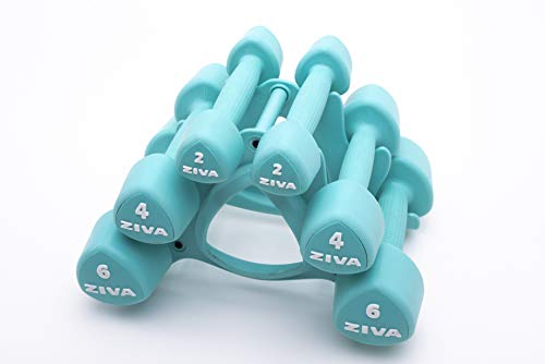 ZIVA Virgin Rubber Steel Tribell Dumbbell Set with - Odorless, Ergonomic Non-Slip Comfort Grip - Exercise Weights for Core and Strength Training – 3 Pair Sets – 2 lb, 4 lb, 6 lb – 24 lbs, Turquoise