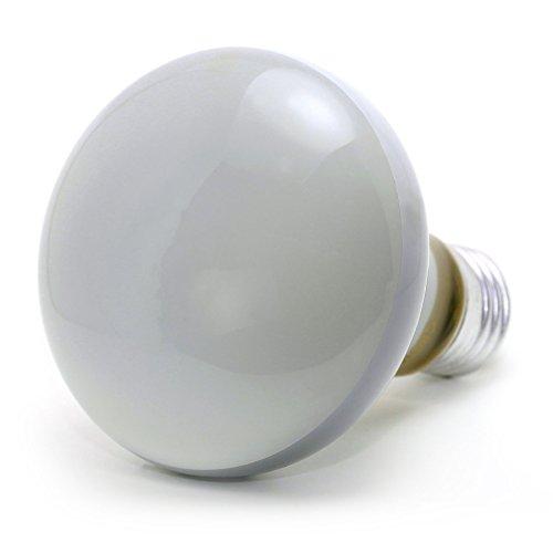 5 x Reflektorstrahler/Scheinwerferlichter, R80, 60W, Edison-Schraubsockel E27, matt, 220-240V