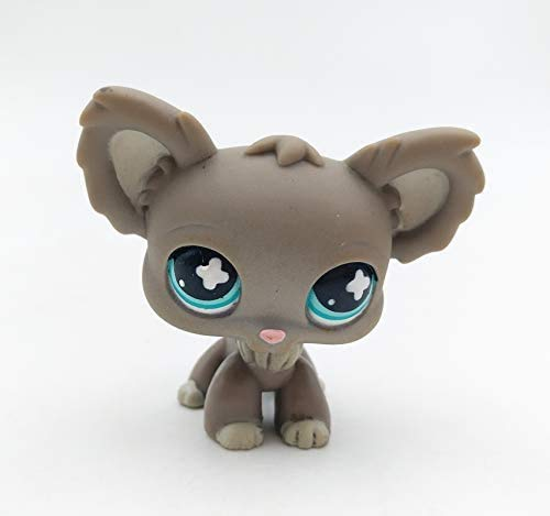 N/N Littlest Pet Shop, LPS Toy Lovely Gray Chihuahua Puppy Dog Blue Eyes Toys