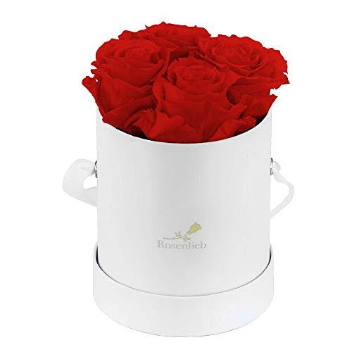 Rosenlieb Rosenbox Weiß mit 4 Infinity Rosen (bis 3 Jahre haltbar)| Echte Rosen | Flowerbox Geschenk | Inklusive Grußkarte (Pico Bellissima, Rot)