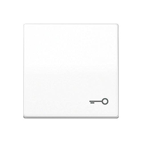 Jung - Taste für einfache Mechanik mit Symbol alpin weiß