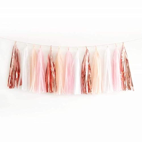 ZYOOO 20PCS Shiny Tassel Garland Tissue Paper Tassel Banner,Table Decor,Tassels Party Decor Supplies - Rose Gold/Peach Color/Light Pink/White