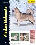 Alaskan Malamute (Excellence)