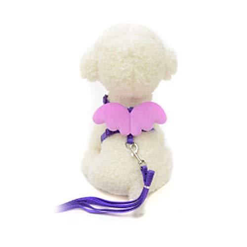 Mein Ji Hundeleine für Haustiere, verstellbar, mit Engelsflügeln, für den Kleinen Hund, Set mit L, Violett