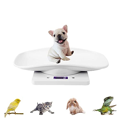 Digital Pet Scale,Puppy and Kitten Weight Scale with LCD Display,Multifunction Small Animal Scale Gram Weight Scale Max 22 lbs for Food Kitchen Measure Hamster Hedgehog