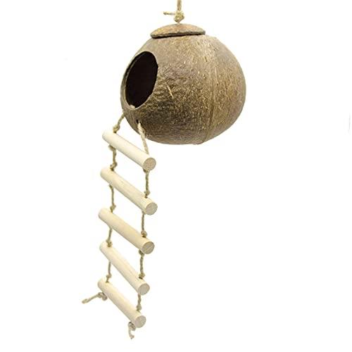 Taloit Parrots Swing, loros colgantes columpios juguetes de madera natural loros juguetes nidos de coco Shell madera hecho a mano loros casa pájaros juguetes para loros