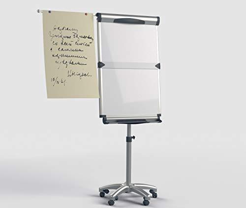 VIZ-PRO Dolphin Magnetic Mobile Whiteboard/Flipchart Easel, 28 X 40 Inches