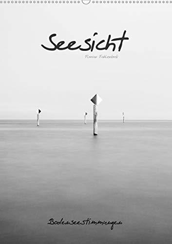 Seesicht - Bodenseestimmungen (Wandkalender 2021 DIN A2 hoch)