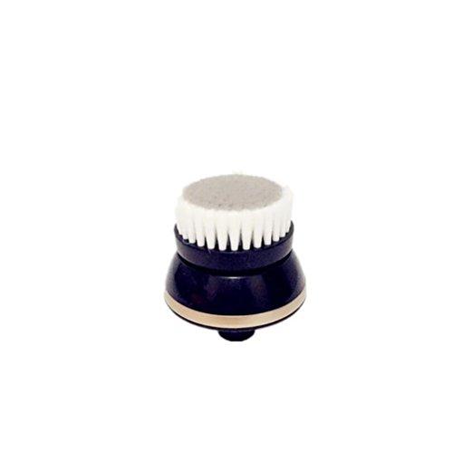 RQ585/50 Smart Click Reinigungsbürstenaufsatz für Ölkontrolle, passend für Philips