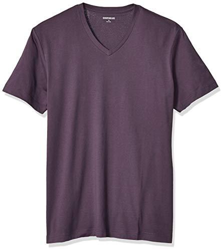 Amazon Brand - Goodthreads Men's Slim-Fit 'The Perfect V-Neck T-Shirt' Short-Sleeve Cotton, Deep Purple Large