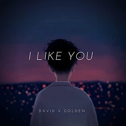 David V Golden