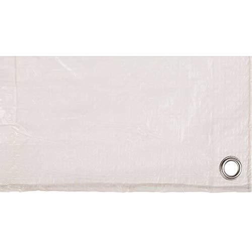Toldo reforzado gramaje 70 grs, 3 x 4 m, color blanco - Catral 560108