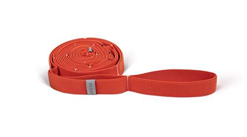 FLEXVIT Multi Band – Fitnessbänder für effektives Ganzkörpertraining, physiotherapeutische Zwecke und Hautstraffung, 3 Stärken, für Anfänger und Profis