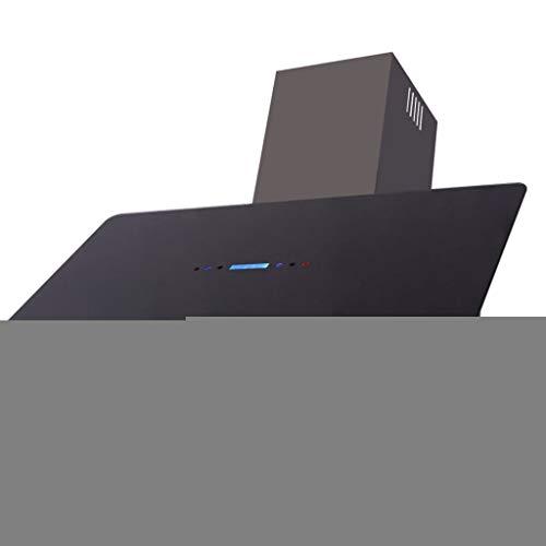 vidaXL Campana Extractora Modelo con Panel Táctil de Color Negro y Plateado 900mm 180W
