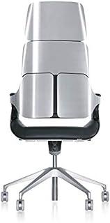 interstuhl Silver 362S Ascot - Silla de oficina (piel y metal cepillado), color plateado