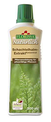 Florissa Schachtelhalm-Extrakt Konzentrat 500 ml
