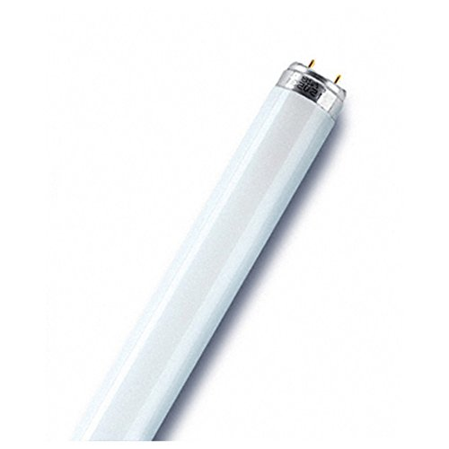 Osram l58840Leuchtstoffröhre, Glas, kühles Weiß, G13, 58W