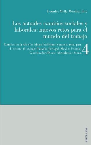 Los actuales cambios sociales y laborales: nuevos retos para el mundo del trabajo: Libro 4: Cambios en la relación laboral individual y nuevos retos ... trabajo (España, Portugal, México, Francia)