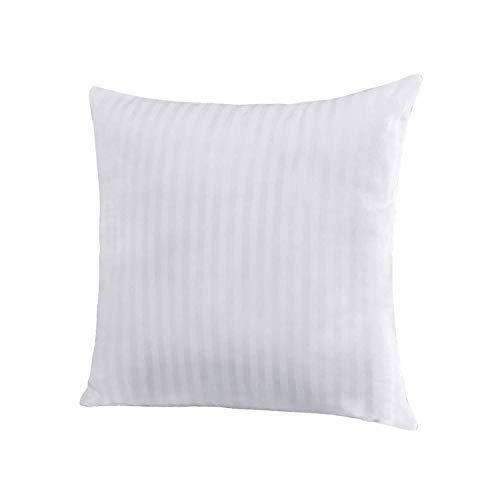 EvZ Homie Premium Stuffer Pillow Insert Sham Square Form Polyester, 20 L X 20 W, Standard White Striped, for 20 Covers