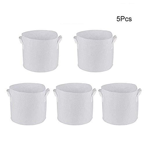 """Value Pack 40 perce-neige bulbes /'Single Blanc /""""WPC Prins Qualité PRINTEMPS bulbes"""