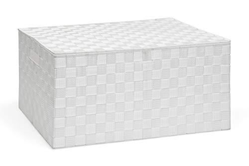 ARPAN - Cesta con Tapa y asa para fácil Transporte, cómoda Caja organizadora para Ropa, Juguetes, baúl Moderno y cónico de Almacenamiento, Blanco, Storage Large