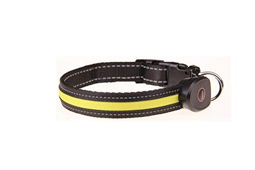 LED Hundehalsband USB wiederaufladbar für Haustiere Nylon Led wiederaufladbar USB...