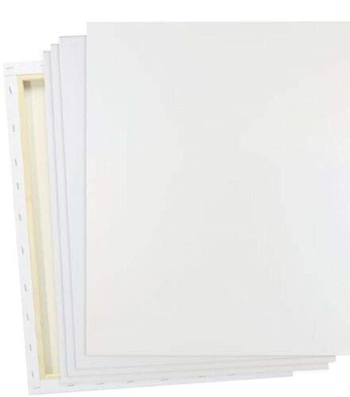 "PAINTS & PRINTS 16x20"" Stretched White Blank Canvas, Pack of 5, Primed, 100% Cotton, Acrylic Pouring, Oil Paint & Wet Art Media, Canvases for Professional Artist, Hobby Painters (Class - 5 Pack)"