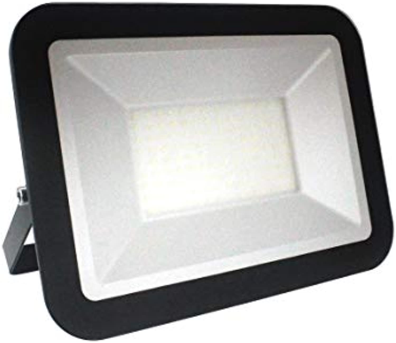 Nedes LF2025 - LED Reflektor LED 100W 230V IP65