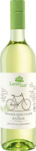 Landlust Weißer Burgunder & Rivaner BIO Weißwein Trocken ( 1 x 0.75 l )