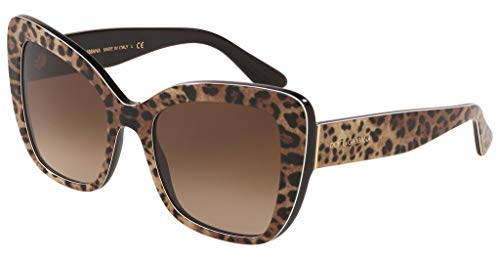 Dolce and Gabbana DG4348 316313 Leo Brown On Black DG4348 Gafas de sol cuadradas Len