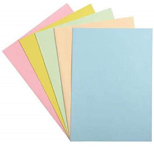 Exacompta 405100E - Un paquet de 100 sous-chemises FOREVER 60g, format 22x31 cm pour format A4, couleurs assorties