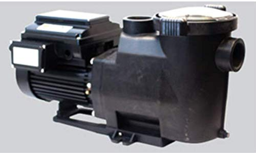 "Blue Torrent Pumps Variable Speed Energy Star Certified In Ground Pool Pump 1.5hp Vs 220v 2"" Plumbing"