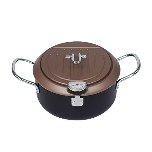 Freidora Control De Temperatura, Con Tapa, Con Filtro De Aceite, Termómetro Fish & Chips Saludable Limpieza Fácil 20 Centímetros Para Cocina Regalo