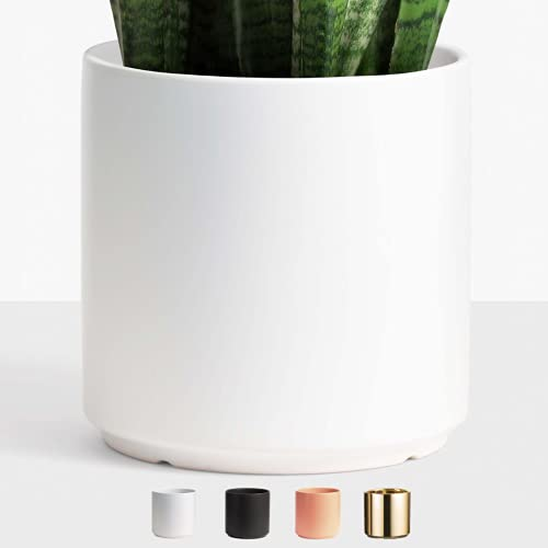 Peach & Pebble 12'' White Ceramic Planter. Indoor Plant Pot With Drainage Hole And Stopper For House Plants And Flowers. Available In 6 Sizes And 4 Colors