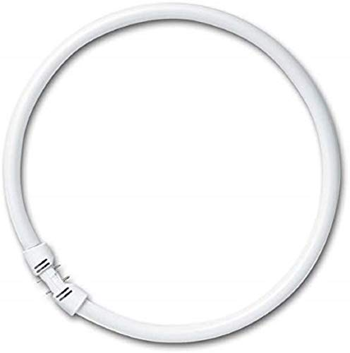 Ring-Leuchtstofflampe T5 FC 22 Watt 840 2Gx13 - Osram