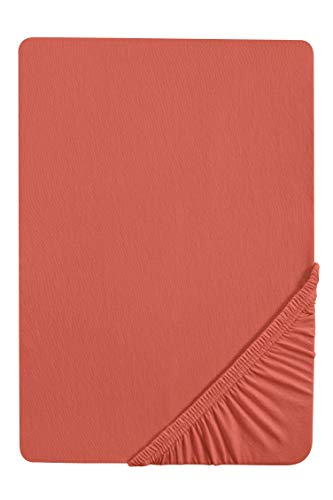 Biberna 0077866 Sábana Bajera Adjustable Jersey-Elastic (Altura del colchón máx.25 cm) 1x 140x200 cm > 160x220 cm, oxido, 140 x 200 cm-160 x 220 cm