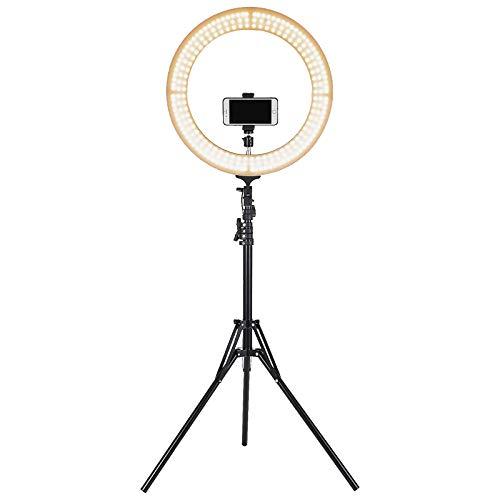 """BuoQua Kit de Iluminación Fotográfica 220 V 85 W Iluminación Continua de Estudio Fotografía con Luz Anillo LED 19"""" y Soportes de Altura Ajustable Iluminación de Luz Fotográfica para Uso Diverso, Moda"""