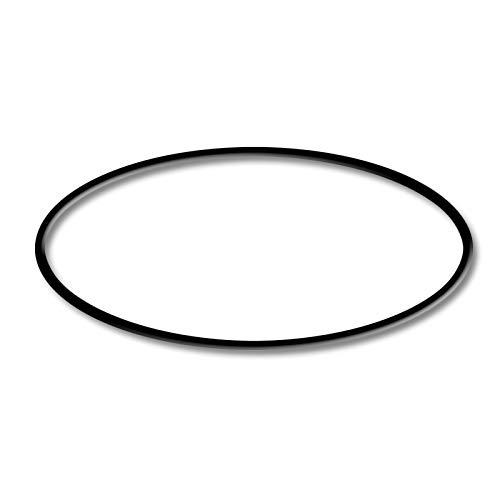 Pieza de Repuesto: SunSun CPF-280/CPF-380/CPF-500 Junta tórica del Filtro de Estanque a...
