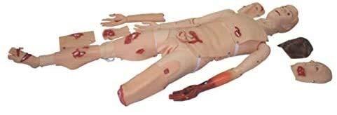 Menschliches Skelett-Modell Demonstration Menschliche Manikin Simulierte Wunde, Erste-Hilfe-Trauma Anatomisches menschliches Modell for die Ausbildung, männlich, Life Size Anatomie-Wissenschafts-Model