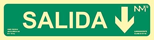 Normaluz NM RD12105 - Señal Luminiscente Salida Flecha Abajo Clase B PVC 0.7mm 10.5 x 42 cm con CTE, RIPCI y Apto para la Nueva Legislación, Verde