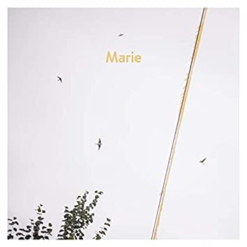 Marie (Dach Session)