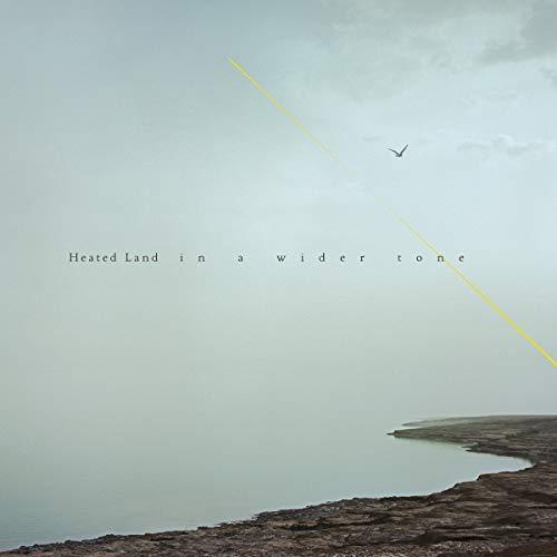 In a Wider Tone [Vinyl LP]