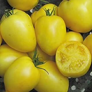 Best powers heirloom tomato Reviews