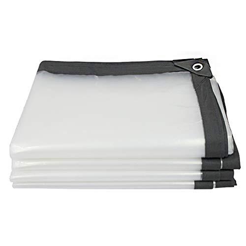 CHAOXIANG Bâche De Protection Plus Épais Tissu en Plastique Coupe-Vent Isolation De Plein Air Couverture Cabanon Plantes Succulentes PE, Personnalisable (Couleur : Clair, Taille : 4X6m)