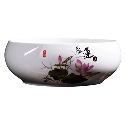ZQDL Maceta suculenta estilo chino cerámica suculentas macetas bonsái titular contenedor sala de estar decoración del hogar