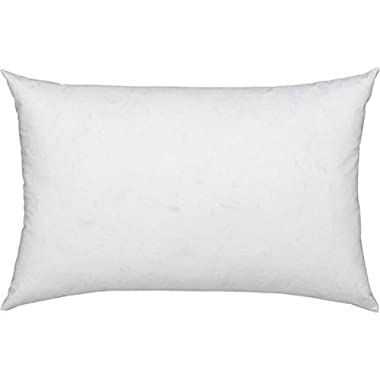 ComfyDown 95% Feather 5% Down, 12 X 16 Rectangle Decorative Pillow Insert, Sham Stuffer - MADE IN USA