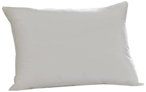 Aller-Ease 31011ATC Pillow, Standard, White