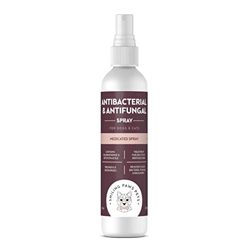 Advanced+ Chlorhexidine & Ketoconazole Antiseptic, Antibacteria & Antifungal Medicated Spray - For Cats and Dog Skin Allergy Treatment, Hot Spot Treatment, Dog Allergy Relief & Dog Anti Itch Spray 8oz