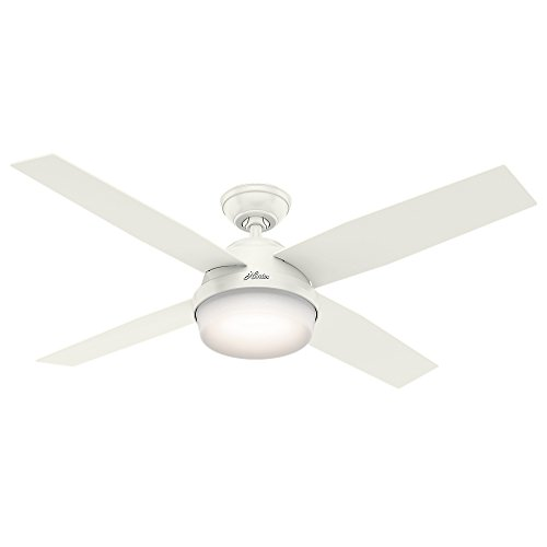 Hunter Dempsey Indoor / Outdoor Ceiling Fan with LED Light...