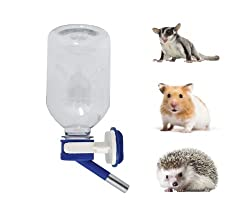 6 Best Mouse Water Bottles 2019